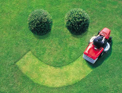 Lawn Care in Long Beach